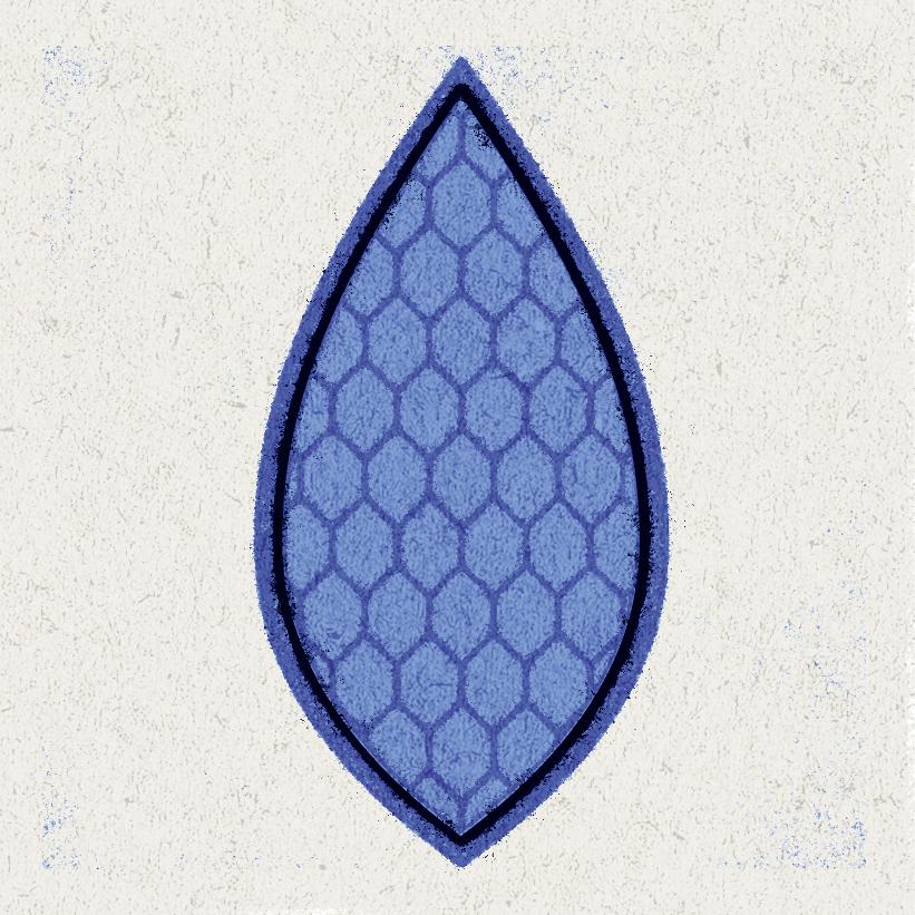 1-leaf